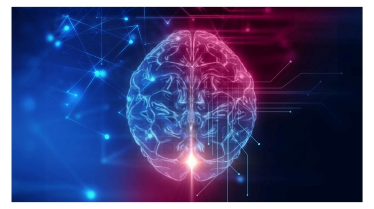what part of the brain controls speech