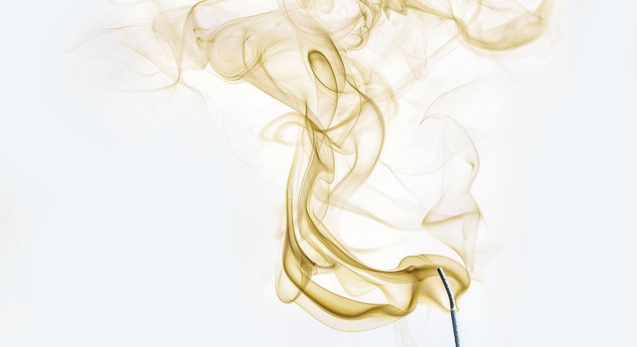 Wsu environmental health safety environmental health - 09 20 2017 Environmental Health Wsu Researchers See Popular Herbicide Affecting Health Across Generations
