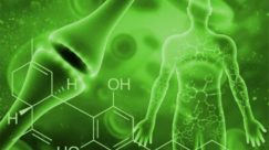 How Long Does CBD Stay In Your System & How To Find The Right CBD For You