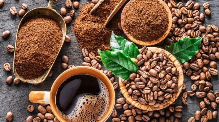 best cbd coffee