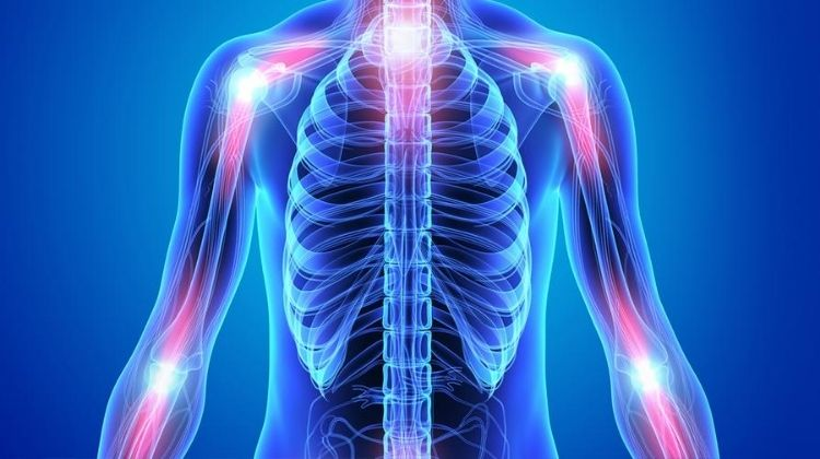 best cbd oil for inflammation
