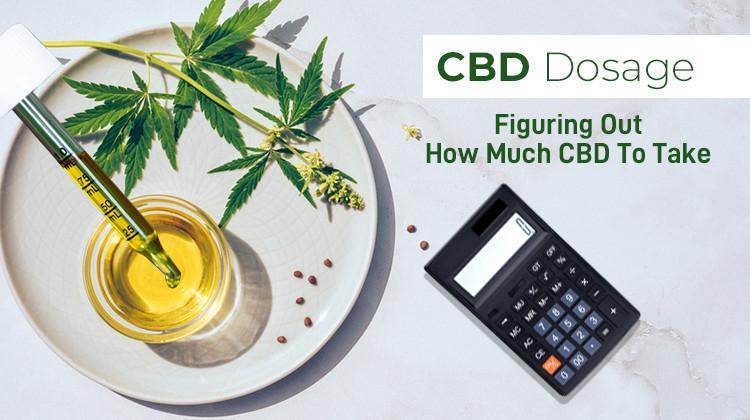 CBD Dosage How Much CBD Should I Take