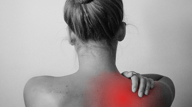 best cbd oil for back pain