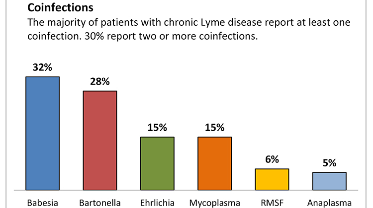 Lyme disease co-infections