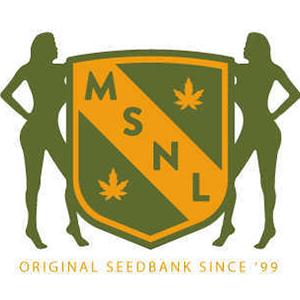 seed bank msnl