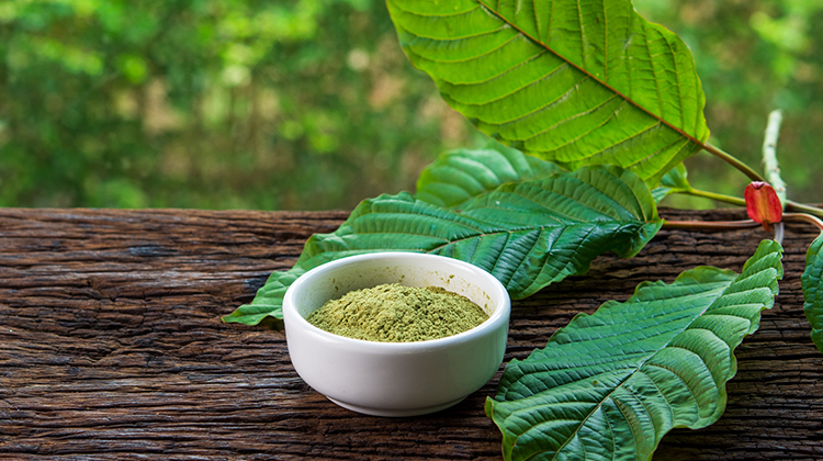 Best Kratom Vendors