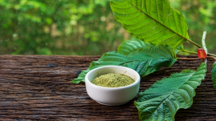 Kratom Benefits: Does It Work, Anxiety, Pain & More 2021