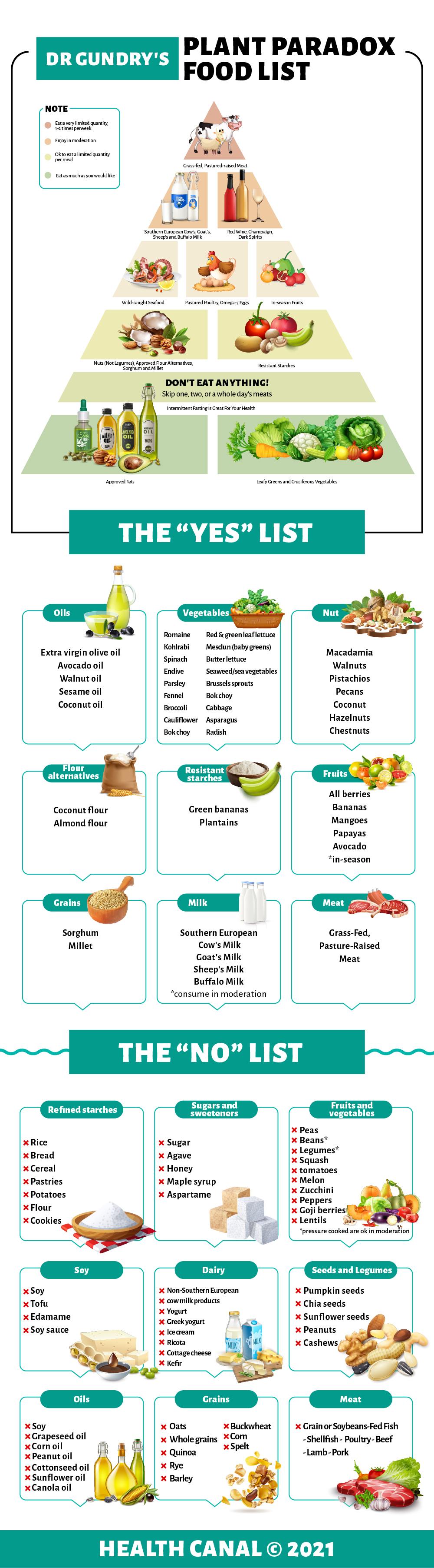 Food pyramid - GundryMD