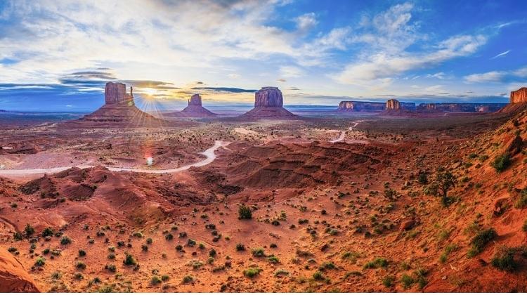 Where To Buy CBD Oil In Arizona